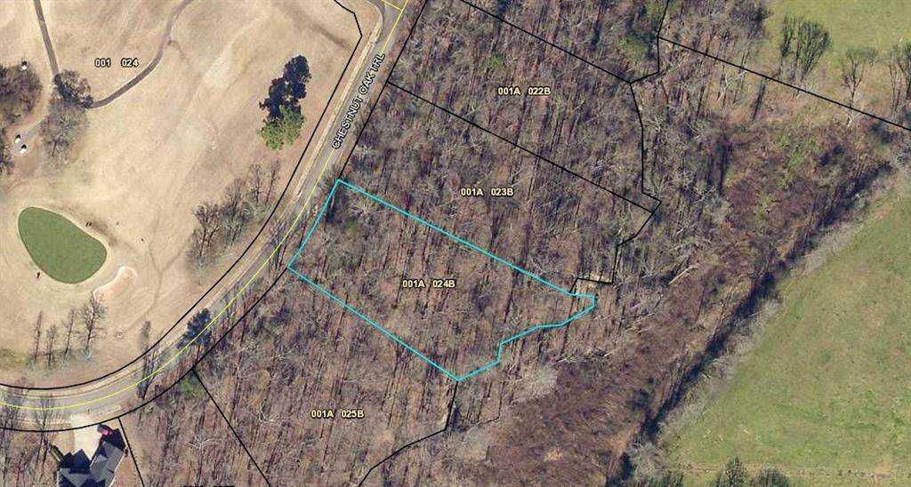 B23 Chestnut Oak Trail - Photo 1