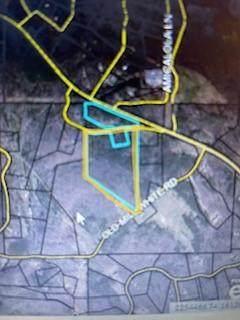 0 E Hawk Nest Circle E, Jasper, GA 30143 (MLS #6897588) :: The Justin Landis Group