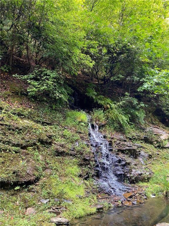 27 Mountain Creek Hollow Drive, Talking Rock, GA 30175 (MLS #6932801) :: North Atlanta Home Team