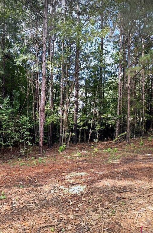 405 Harvest Court, Locust Grove, GA 30248 (MLS #6957856) :: Path & Post Real Estate