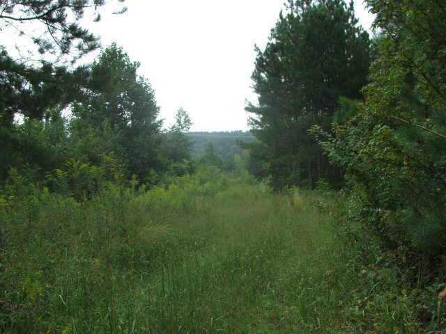 Lot 0 Salacoa Road, Waleska, GA 30183 (MLS #3783487) :: Path & Post Real Estate