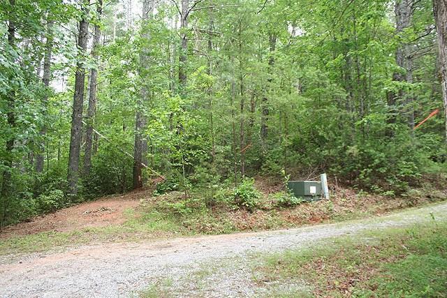 0 Avery Trail, Dahlonega, GA 30533 (MLS #5542130) :: North Atlanta Home Team