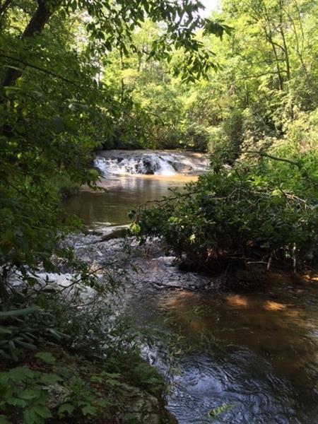 0 Nimblewill Creek Road, Dahlonega, GA 30533 (MLS #5577311) :: The Bolt Group
