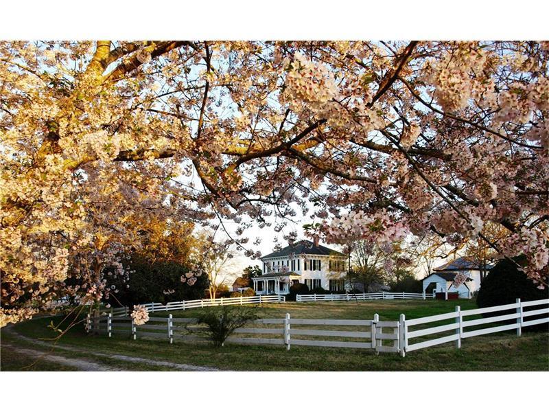 1590 Carver Road, Griffin, GA 30224 (MLS #5655726) :: North Atlanta Home Team