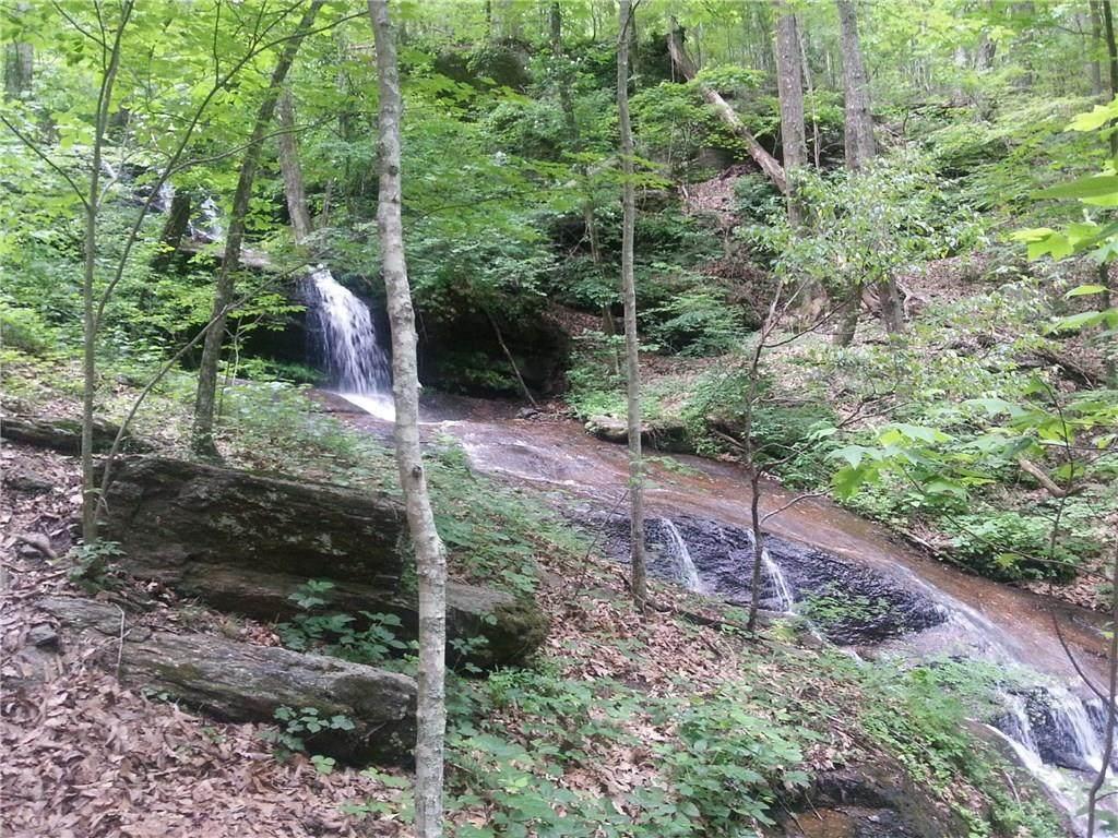 4494 Denny Ridge Road - Photo 1