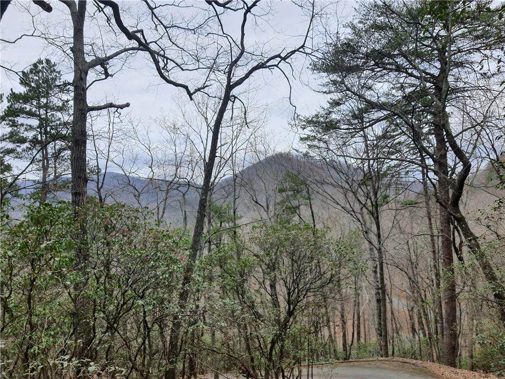 410 Grouse Gap Drive - Photo 1