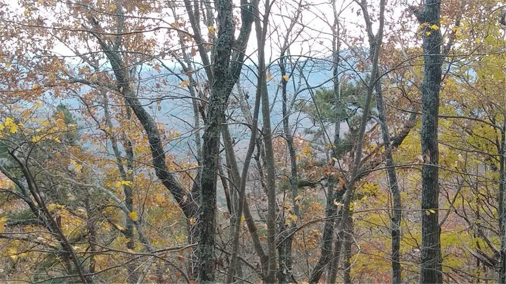 2099 Mcelroy Mountain Drive - Photo 1