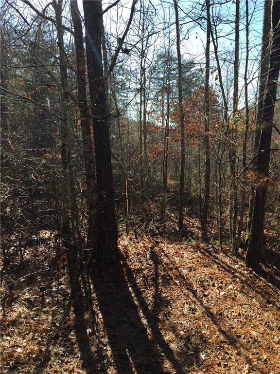 0 County Road 40, Other-Alabama, GA 36262 (MLS #6016344) :: North Atlanta Home Team