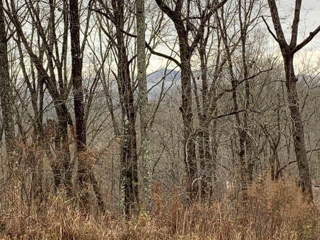 0 Doll Mountain Road, Ellijay, GA 30540 (MLS #6659028) :: The Butler/Swayne Team