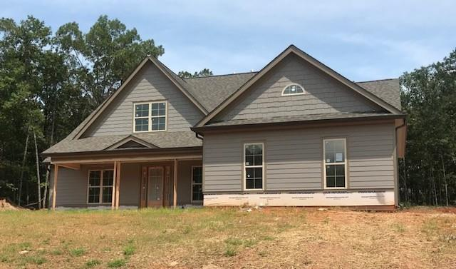 206 Blue Point Parkway, Fayetteville, GA 30215 (MLS #6039842) :: The Cowan Connection Team