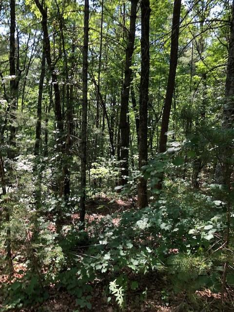 https://bt-photos.global.ssl.fastly.net/fmls/orig_boomver_4_6098679-2.jpg