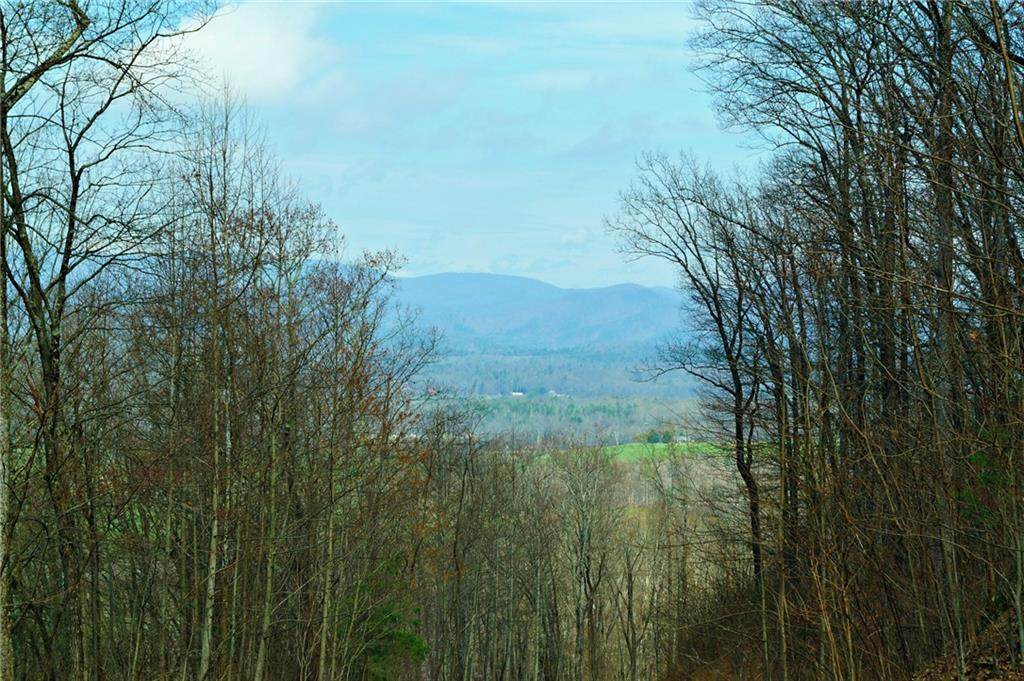 Lt 31L Mountainside Drive - Photo 1