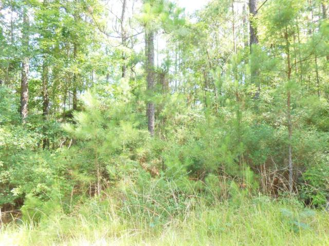 Russell Cir, Leesville, LA 71446 (MLS #18-4645) :: The Trish Leleux Group