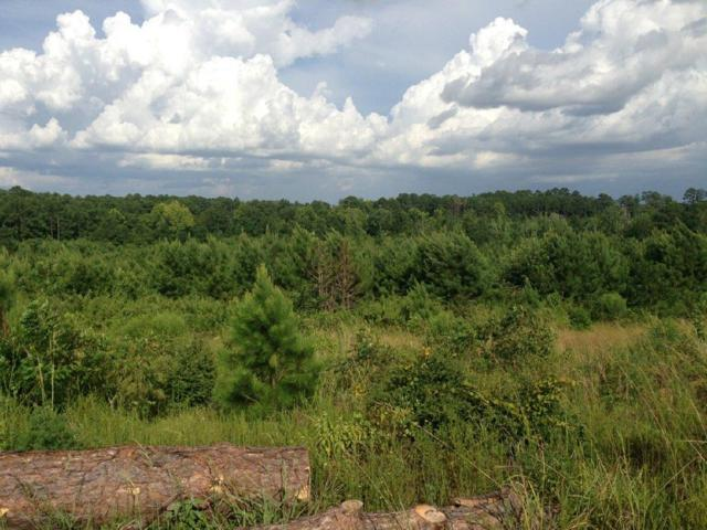 Lot 12 Buck Ridge, Leesville, LA  (MLS #18-4673) :: The Trish Leleux Group
