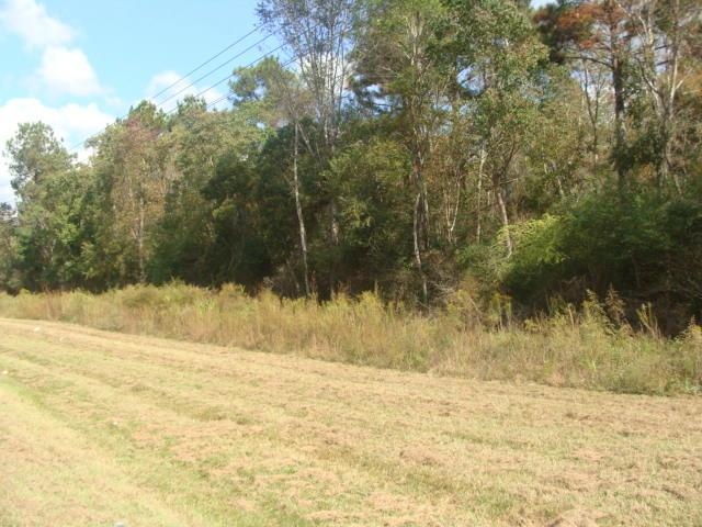 Ball Rd And Hwy 27, DeRidder, LA 70634 (MLS #02-4579) :: The Trish Leleux Group