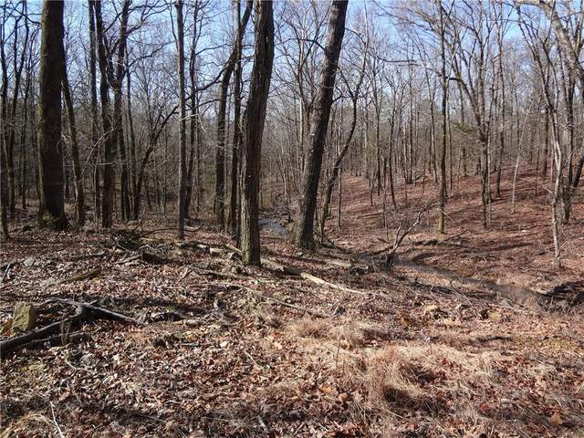 TBD Carter Mountain Road, Ozark, AR 72949 (MLS #1046595) :: Fort Smith Real Estate Company