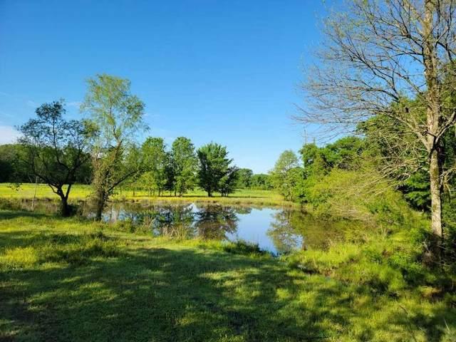 1279 Peterpender Lane, Charleston, AR 72933 (MLS #1046287) :: Fort Smith Real Estate Company