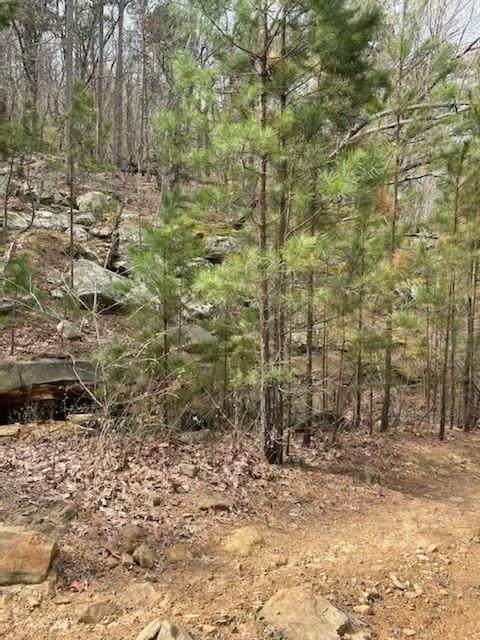 TBD Clayton Trail, Tuskahoma, OK 74536 (MLS #1046007) :: Fort Smith Real Estate Company