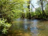 0 Caney Fork - Photo 10