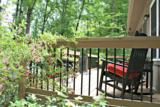 3338 Shook Cove Rd. - Photo 3