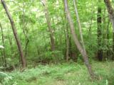 334 Fox Den Ridge - Photo 21