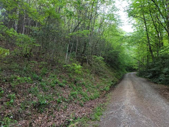 00 Black Forest, Bryson City, NC 28713 (#26019792) :: High Vistas Realty