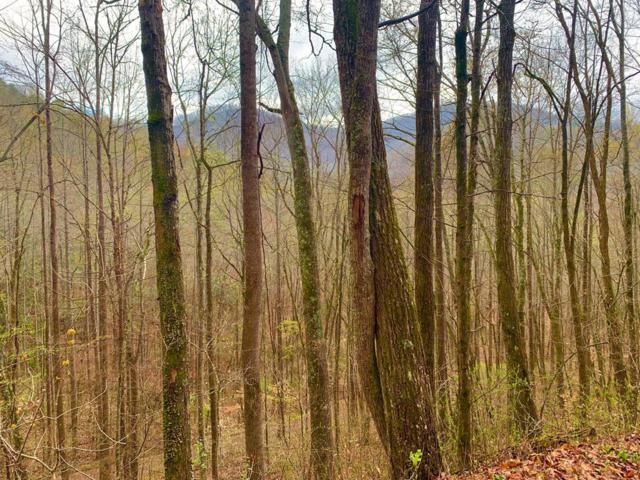 00 Whipporwill Lane, Franklin, NC 28734 (#26019875) :: High Vistas Realty