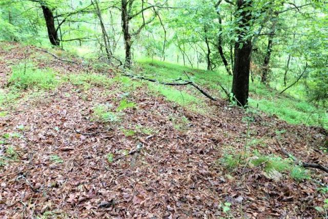 4598 Rose Creek Rd, Franklin, NC 28734 (#26019956) :: Exit Realty Vistas