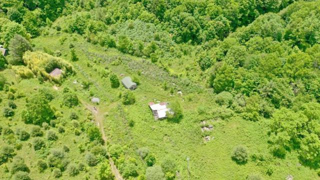 Tuckasegee, NC 28783 :: Exit Realty Vistas