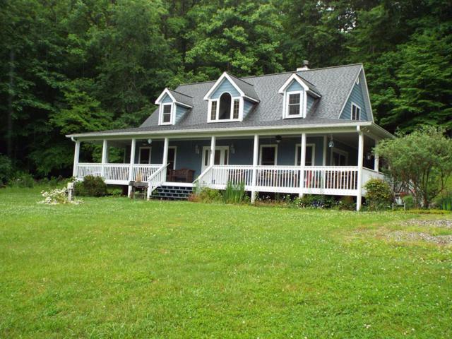 226 Wildcat Mountain Trail, Sylva, NC 28779 (#26019964) :: Exit Realty Vistas