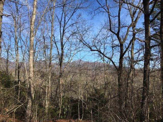 0 Pretty Precious, Whittier, NC 28789 (#26019979) :: Exit Realty Vistas