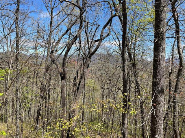 100 Hartwell Ln, Whittier, NC 28789 (#26020024) :: High Vistas Realty