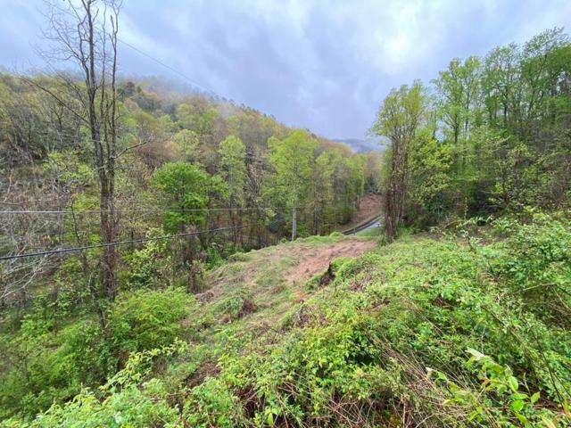 003 Smoky Cove, Bryson City, NC 28713 (MLS #26020075) :: Old Town Brokers