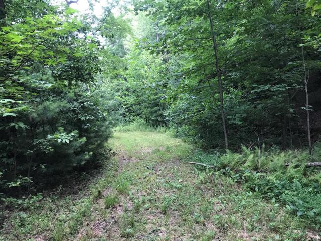000 Lower Burningtown, Franklin, NC 28734 (MLS #26020190) :: Old Town Brokers