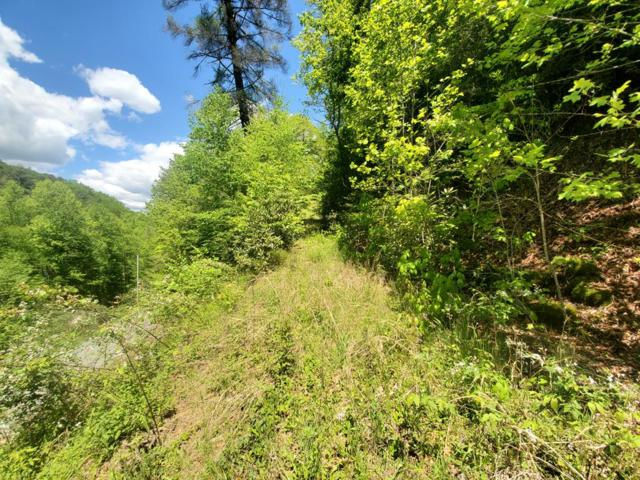 Lot 22 Black Forest Drive, Bryson City, NC 28713 (MLS #26020225) :: Old Town Brokers