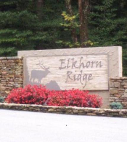 00 Elkhorn Ridge Drive, Franklin, NC 28734 (#26020256) :: High Vistas Realty