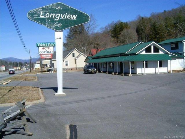 2222 Georgia Rd, Franklin, NC 28734 (MLS #26020359) :: Old Town Brokers