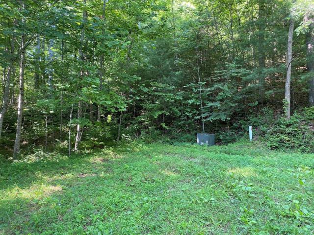 0 Village Cove Dr., Bryson City, NC 28713 (#26020410) :: High Vistas Realty