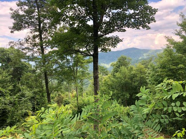 Lot 11 Wild Turkey Drive, Whittier, NC 28789 (#26020421) :: High Vistas Realty