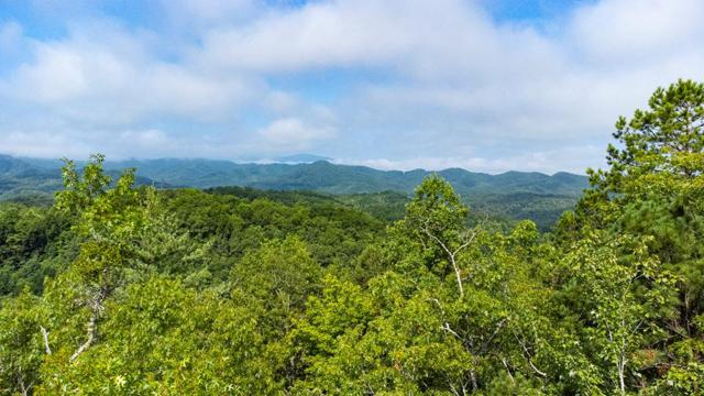 00 Hwy 28S, Bryson City, NC 28713 (MLS #26020527) :: Old Town Brokers