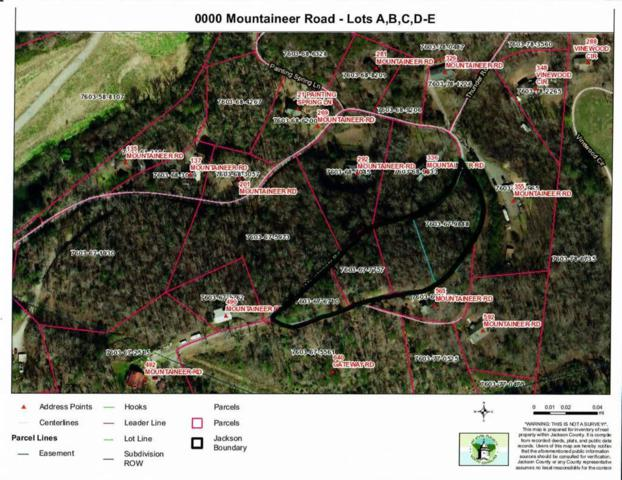 0000 Mountaineer Road, Whittier, NC 28789 (#26020548) :: High Vistas Realty