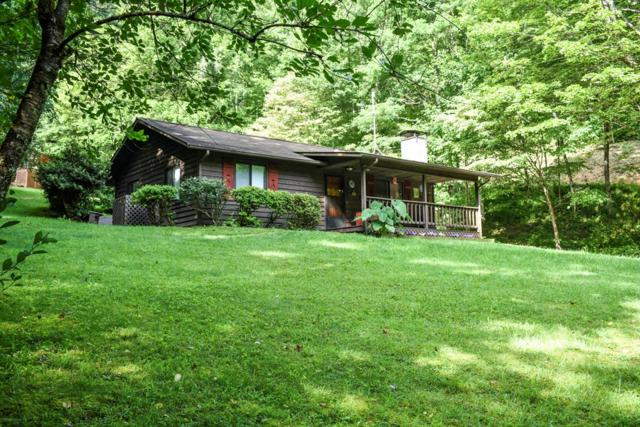1415 Battle Branch Rd, Bryson City, NC 28713 (MLS #26020585) :: Old Town Brokers