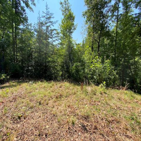 Lot 3 Red Dog Ln, Whittier, NC 28719 (MLS #26020608) :: Old Town Brokers
