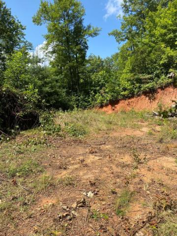 Lot 4 Red Dog Ln, Whittier, NC 28719 (MLS #26020609) :: Old Town Brokers