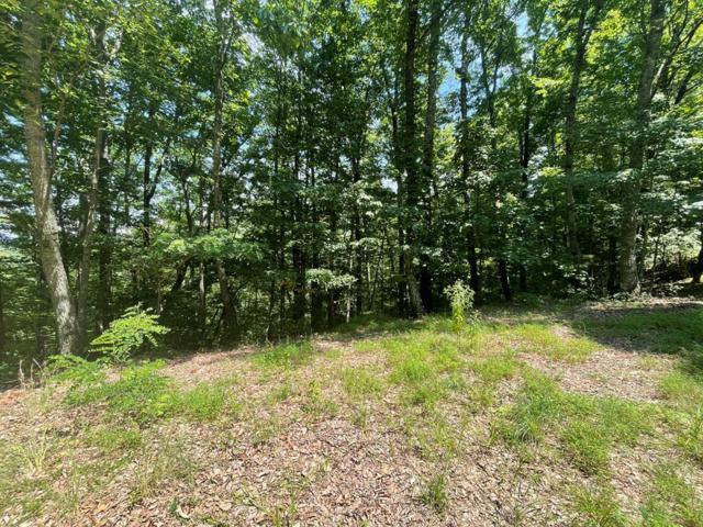 LOT 28 Black Forest Drive, Bryson City, NC 28713 (#26020630) :: High Vistas Realty