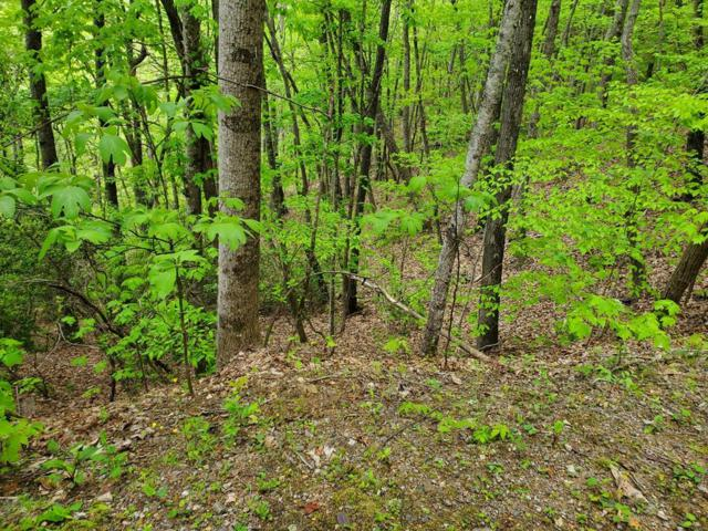 00 N. Valley View Rd., Franklin, NC 28734 (#26020691) :: High Vistas Realty