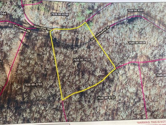 Lot 28 Mountain Forest Estates, Sylva, NC 28779 (MLS #26020713) :: Old Town Brokers