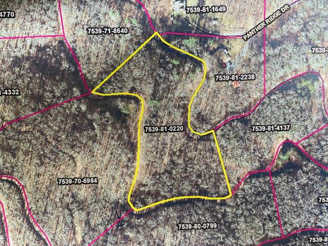 Lot 68 Mountain Forest Estates, Sylva, NC 28779 (MLS #26020715) :: Old Town Brokers