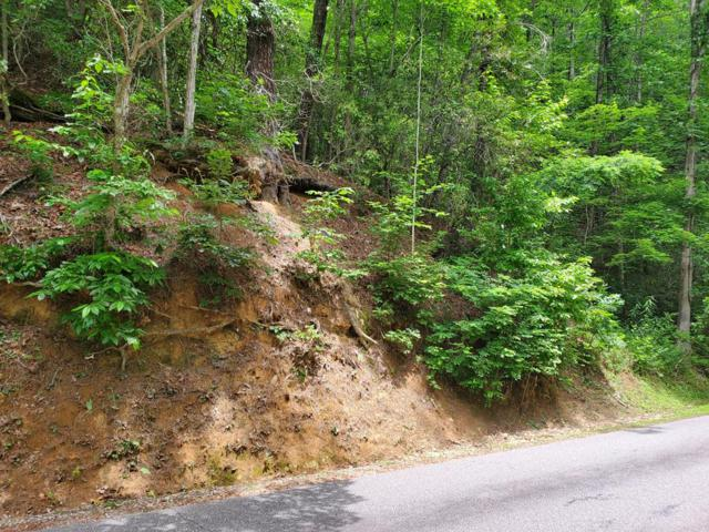00 Pioneer Trail, Franklin, NC 28734 (#26020762) :: High Vistas Realty