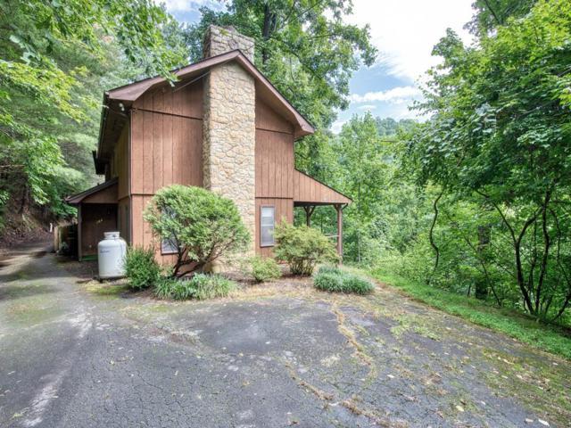 102 Sage Ct, Maggie Valley, NC 28751 (#26020822) :: High Vistas Realty